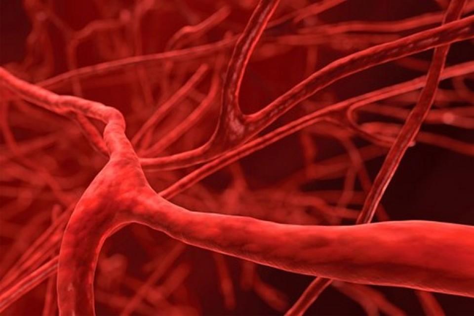 Кръвен тест може да провери над 50 вида рак?