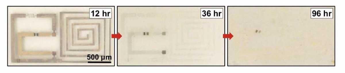polimer 2
