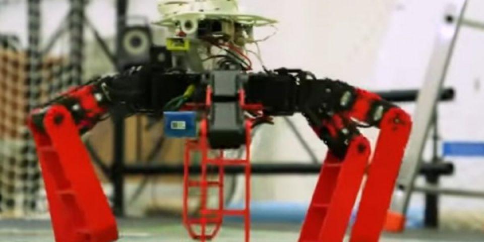 Учени разработиха робот, вдъхновен от мравките